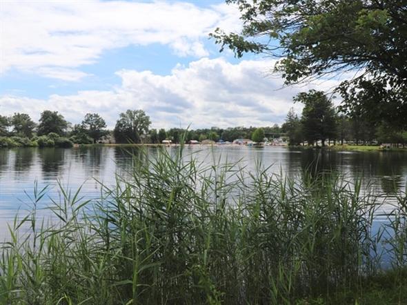 Summer afternoon bike ride around Horseshoe Lake