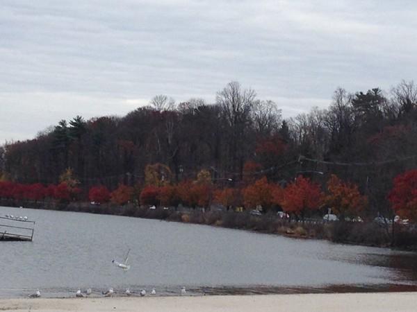 Budd Lake New Jersey in late fall