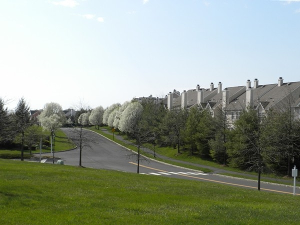 Perfect setting for a peaceful spring walk on the miles of walking paths/sidewalk system