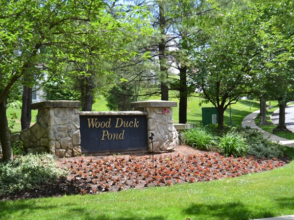Residents living in Wood Duck Pond in The Hills enjoy the beauty of nature and walking paths