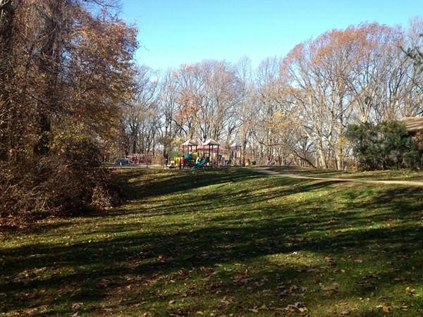 A playground area at Tatum Park