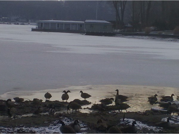 On Lake Hopatcong. Those who stayed for the winter