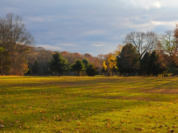 Leaves decorate the ground at Lake Lackawanna Golf Course