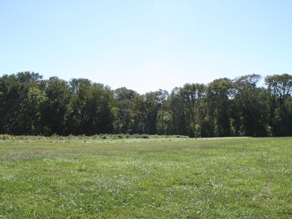 Tatum Park wde open fields