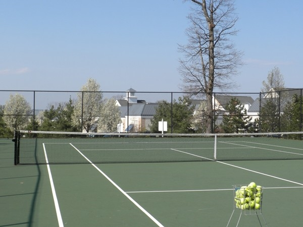 Some of The Hills many tennis courts surrrounded by gorgeous views and foliage