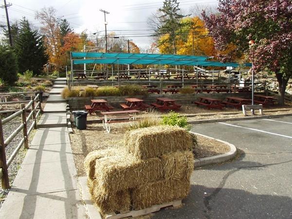 Demarest Farms: Picnic fun