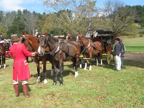 Beautiful horses and carriages for your pleasure at Natirar Park races in the fall.