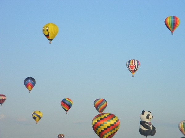 Lots of colorful balloons at the 2015 Balloon Festival