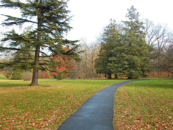 Marqand Park in Princeton -- just a short walk from downtown