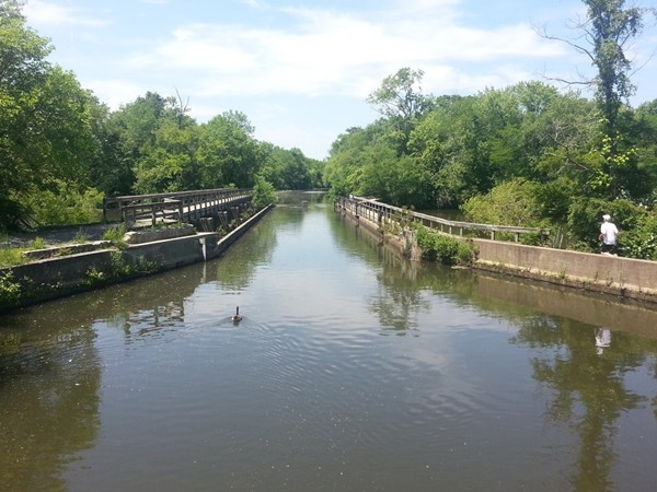 Jogging/walking/biking path along both sides of the Delaware and Raritan Canal in Princeton