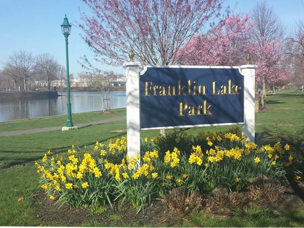 Spring at Franklin Lake Park