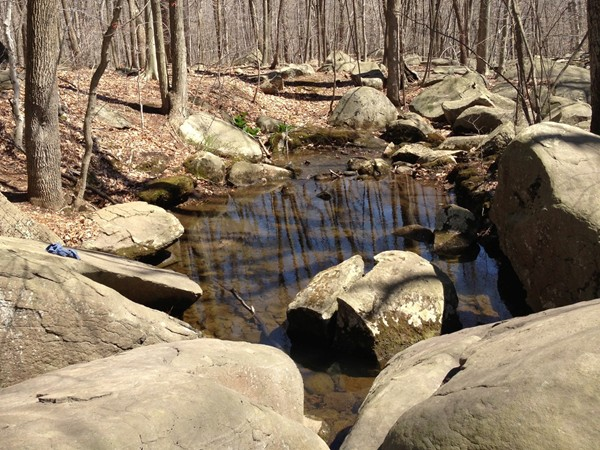 Massive rocks outline the brook and make a wonderful place for a picnic