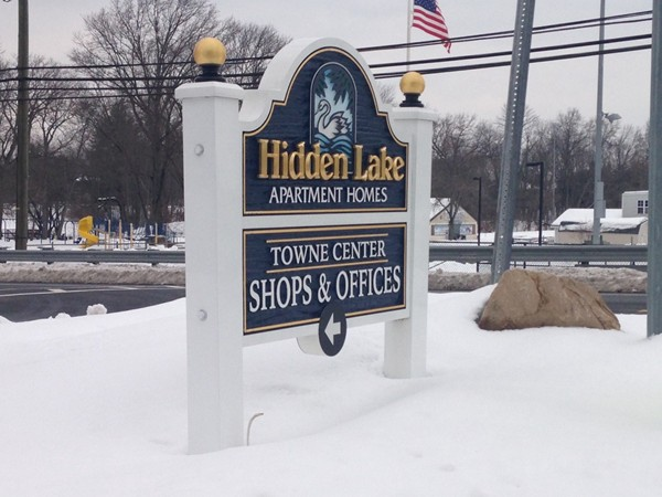 Hidden Lake Development consists of townhouses and condominiums: Close to train, bus and restaurants