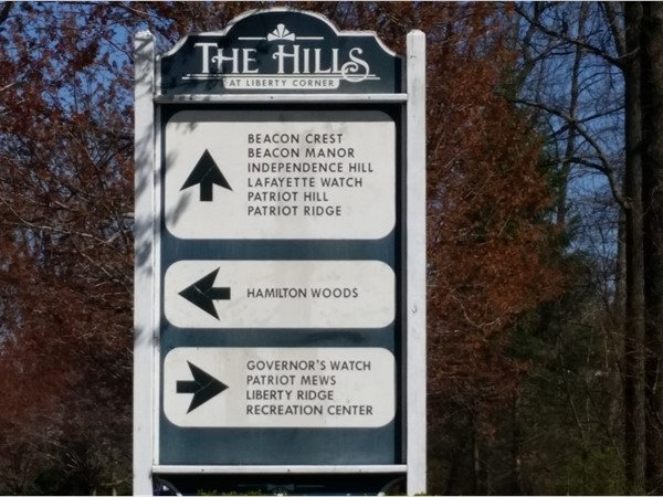 The Hills development includes access to a community center, elementary school, and shopping