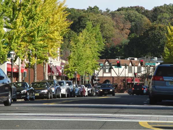 Downtown Tenafly - Washington Avenue