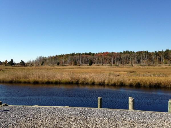 A homeowner's view on Cedar Run Dock Road