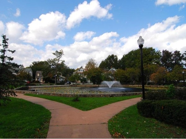 Halcyon Park Pond - the center of neighborhood happenings- block parties, Halloween Parades