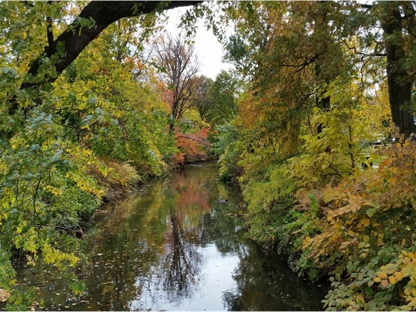 Scenic fall view of the creek in Nutley Park