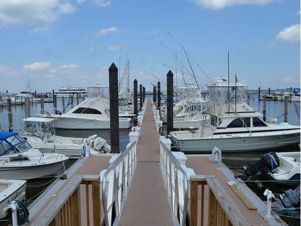 Perfect day to take out a boat or stroll down the pier
