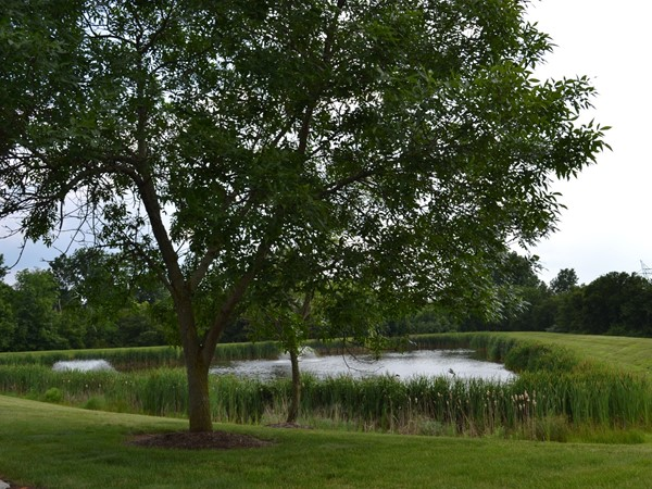 Residents enjoy the nature and pond with a fountain in the Stratton Meadows community