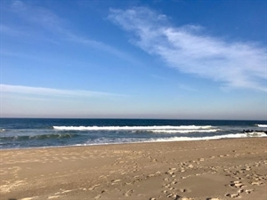 The Jersey Shore Real Estate - Homes for Sale in The Jersey