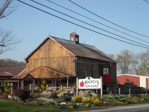 Mackey's Orchard
