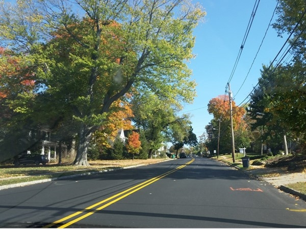 One of Mendham's lovely neighborhoods