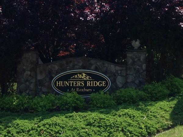 Desirable Hunters Ridge in Roxbury Township