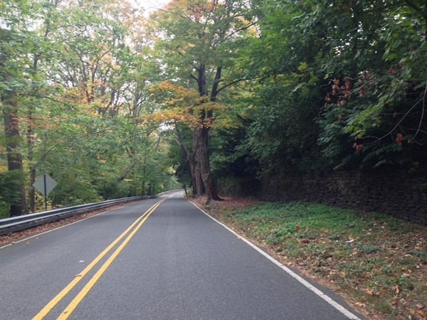East Highland Avenue as the leaves change color