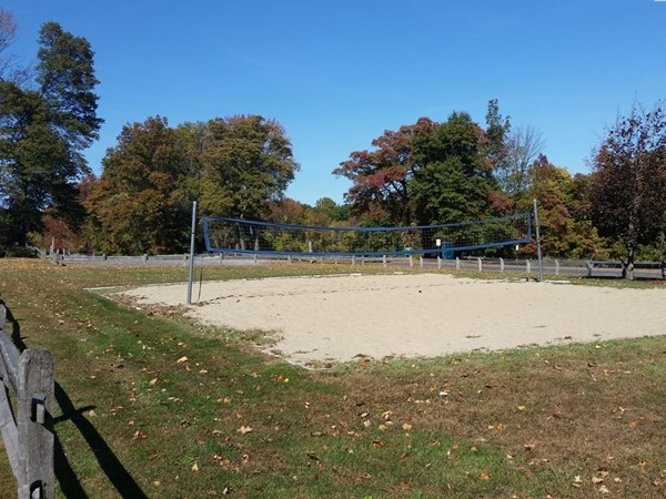 Chubb Park features many athletic fields including a volleyball court