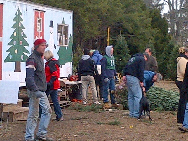 Westfield Y's Men Club Tree Lot: get your perfect tree and know all proceeds benefit local charities