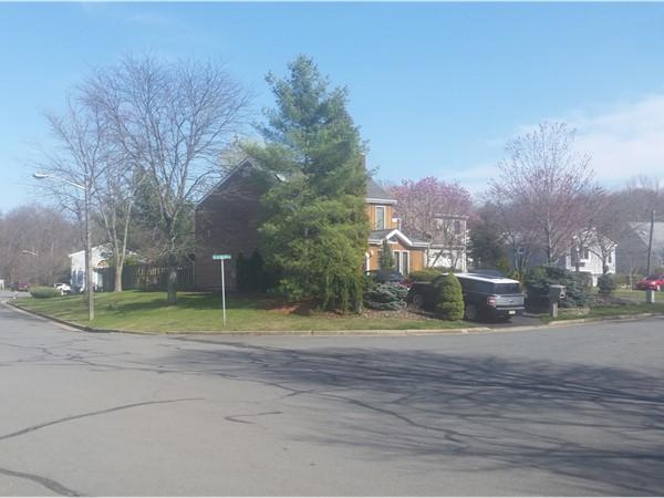 A very quiet, friendly neighborhood in South Brunswick