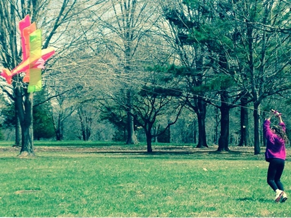 Kite flying at Monmouth Battlefield State Park
