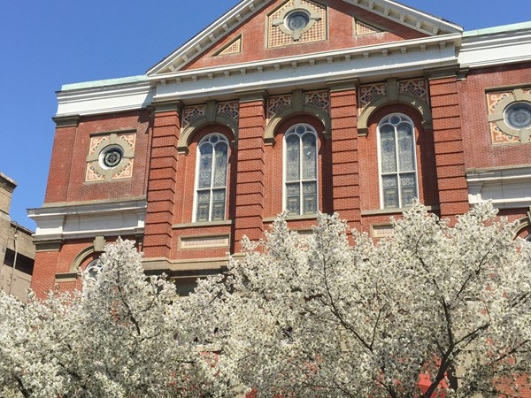 Trees in bloom in front of St. Michael's Church