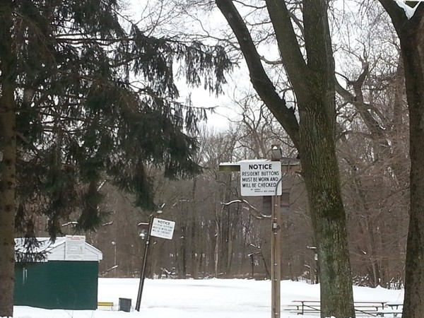 Oradell Avenue skating pond