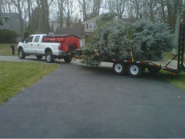 2013 Hackettstown Holiday Tree is On Its Way!