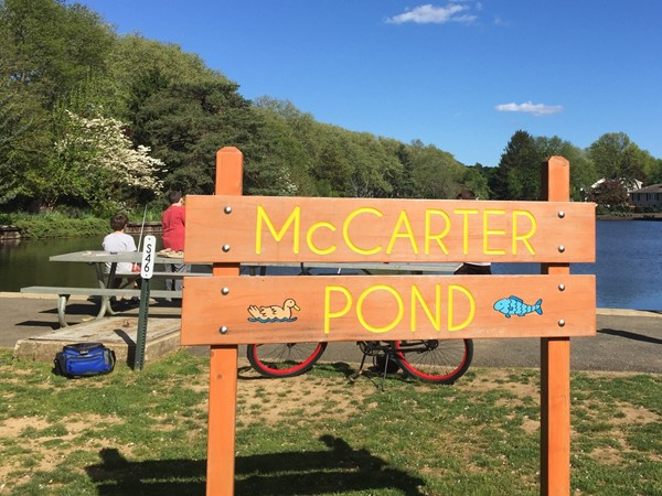 Fishing at the McCarter Pond