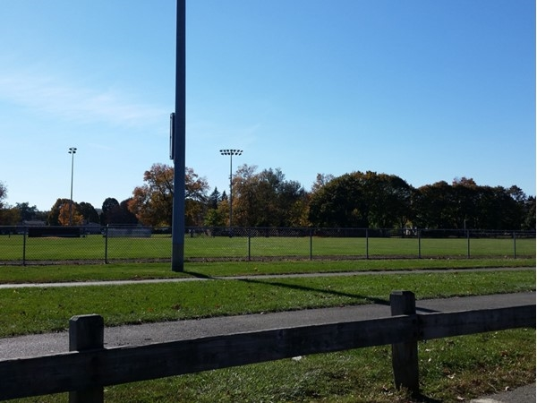 Horseshoe Lake Park in Roxbury has plenty of fields