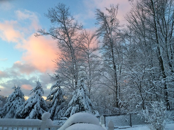 "What a pretty sunrise with the new fallen snow! It was a heavy snowfall of about 10"" this time"