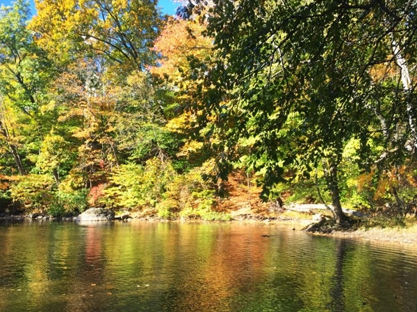 The trails along the Ramapo River are a wonderful place to enjoy the fall foliage