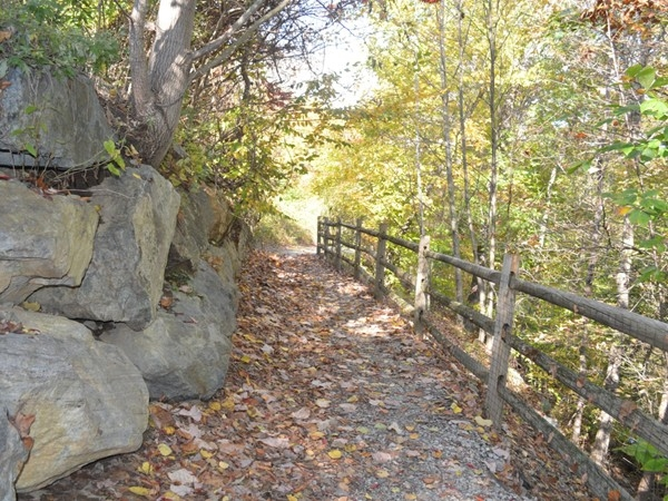 Nature trail in the Ramapo River Reserve