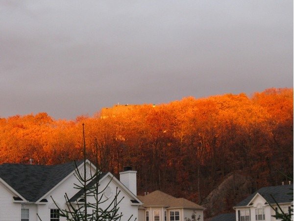 Mountain on fire! The stunning view of a sunset touching the fall leaves