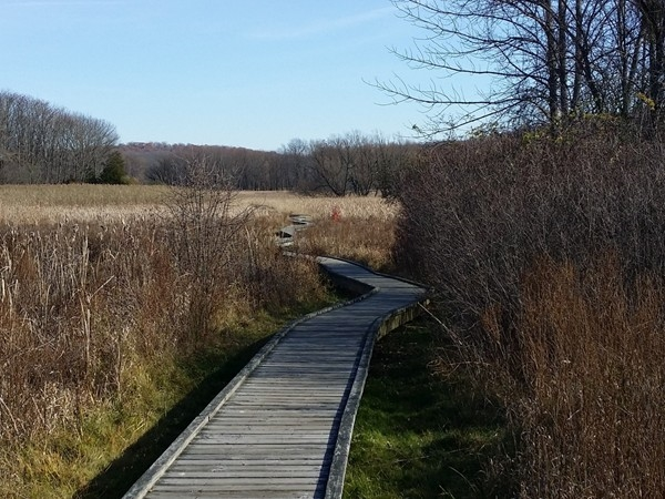 Boardwalk view on the Appalachian Trail, a perfect place to enjoy nature