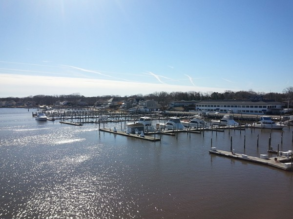 A warm winter day on the Manasquan River