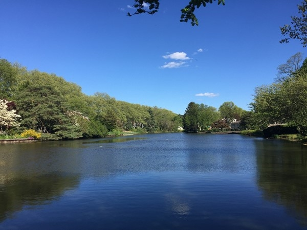 Calm beauty at McCarter Pond in Fair Haven