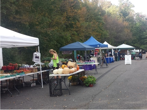 Farmer's Market in the fall
