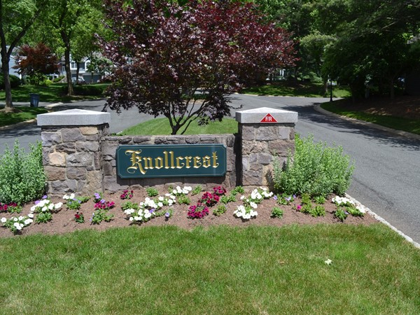 Knollcrest neighborhood consists of 100 townhomes situated in the middle of The Hills at Bedminster.