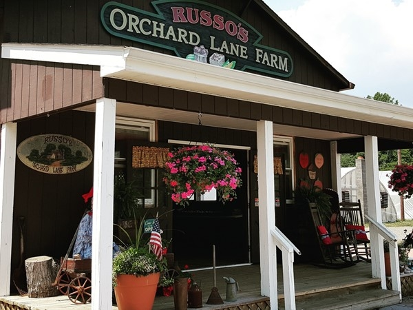 Russo's Orchard in Chesterfield has awesome local greenhouse tomatoes and many more veggies