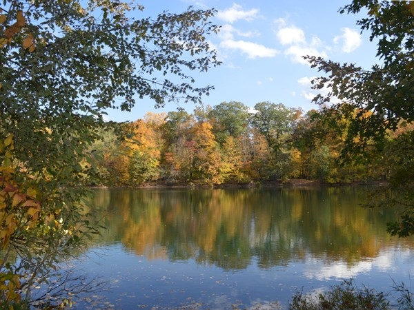Fall foliage along the Lake in the Ramapo River Reserve