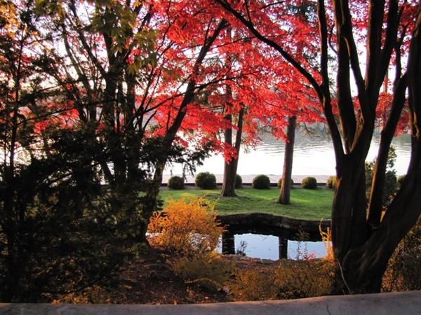 Lake Mohawk boardwalk